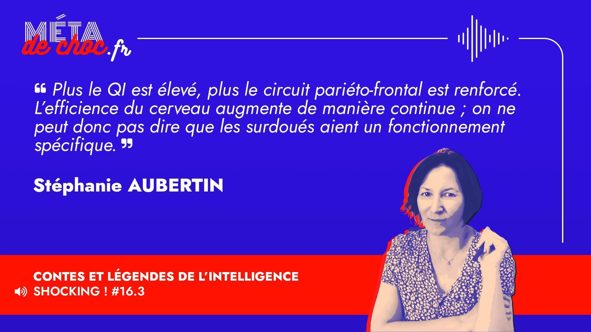 Thème du mème :  | Citation :  | Auteur.rice : Stéphanie Aubertin | Émission : Contes et légendes de l'intelligence | Image d'illustration :